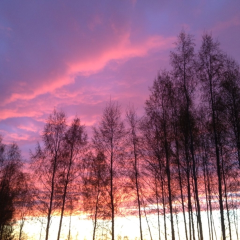 ilta-aurinkoa